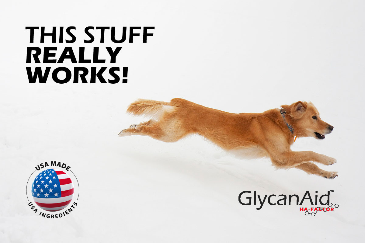GlycanAid® HA Glucosamine Joint Supplement for Dog Arthritis ...