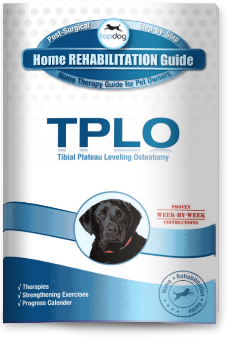 Tibial Plateau Leveling Osteotomy (TPLO) Surgery for Dogs