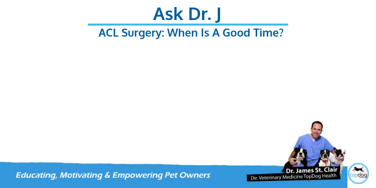 ACL Surgery: When's a good time?