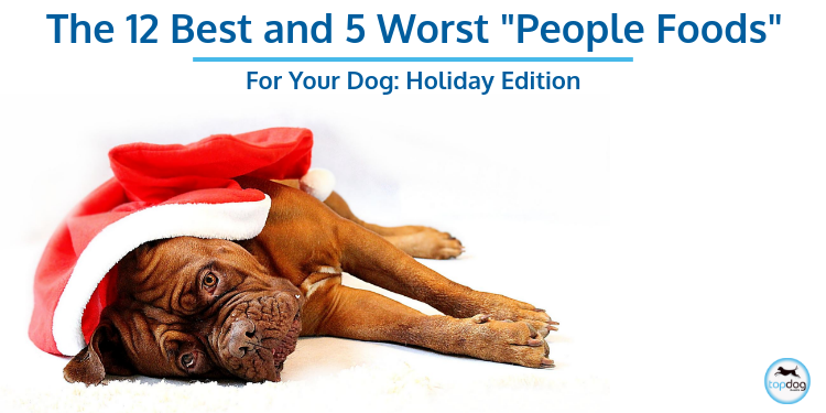 "The 12 Best (and 5 Worst) ""People Foods"" for Your Dog: Holiday Edition"