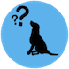 dog rehabilitation frequently asked questions
