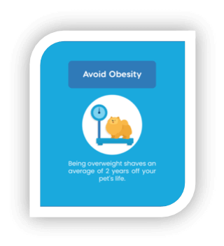 extend life by avoiding obesity