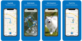 2019 top dog walking apps