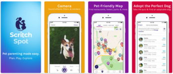 2019 top dog apps