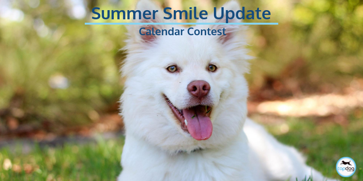 Summer Smile Campaign and Calendar Contest