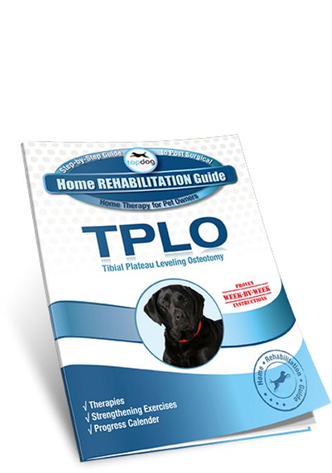 TPLO Home Rehab Guide