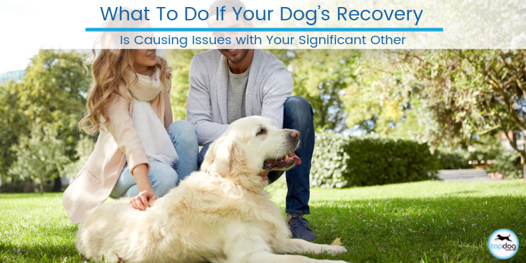 What To Do If Your Dog's Recovery Is Causing Issues with Your Significant Other