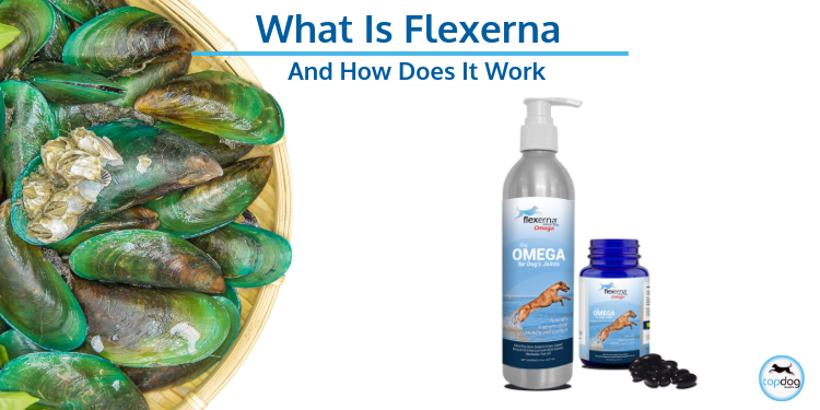 Q: What's Flexerna and how does it work?