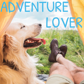 old dogs who love adventure