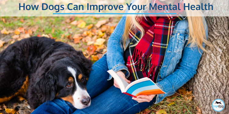 How Dogs Can Improve Your Mental Health
