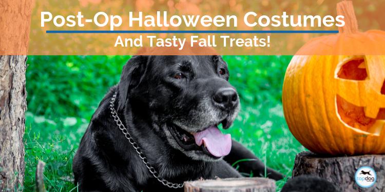 Post-Op Halloween Costumes & Tasty Treats