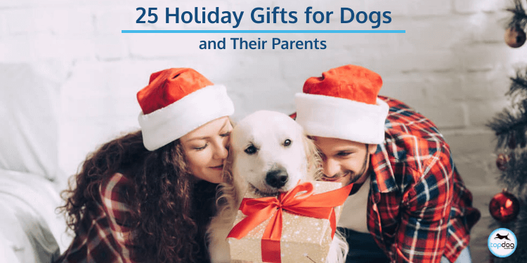 25 Holiday Gifts for Dogs (and Their Parents)