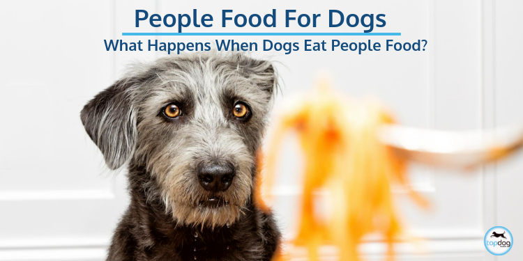 People Food for Dogs…