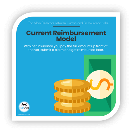 pet insurance reimbursement model
