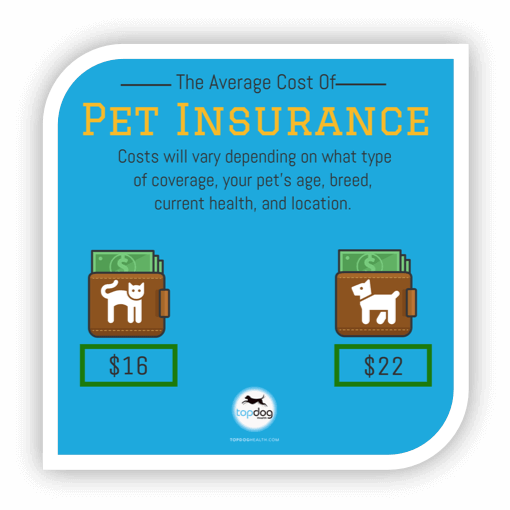 Cost of pet insurance for cats vs dogs