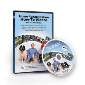 rehab dvd