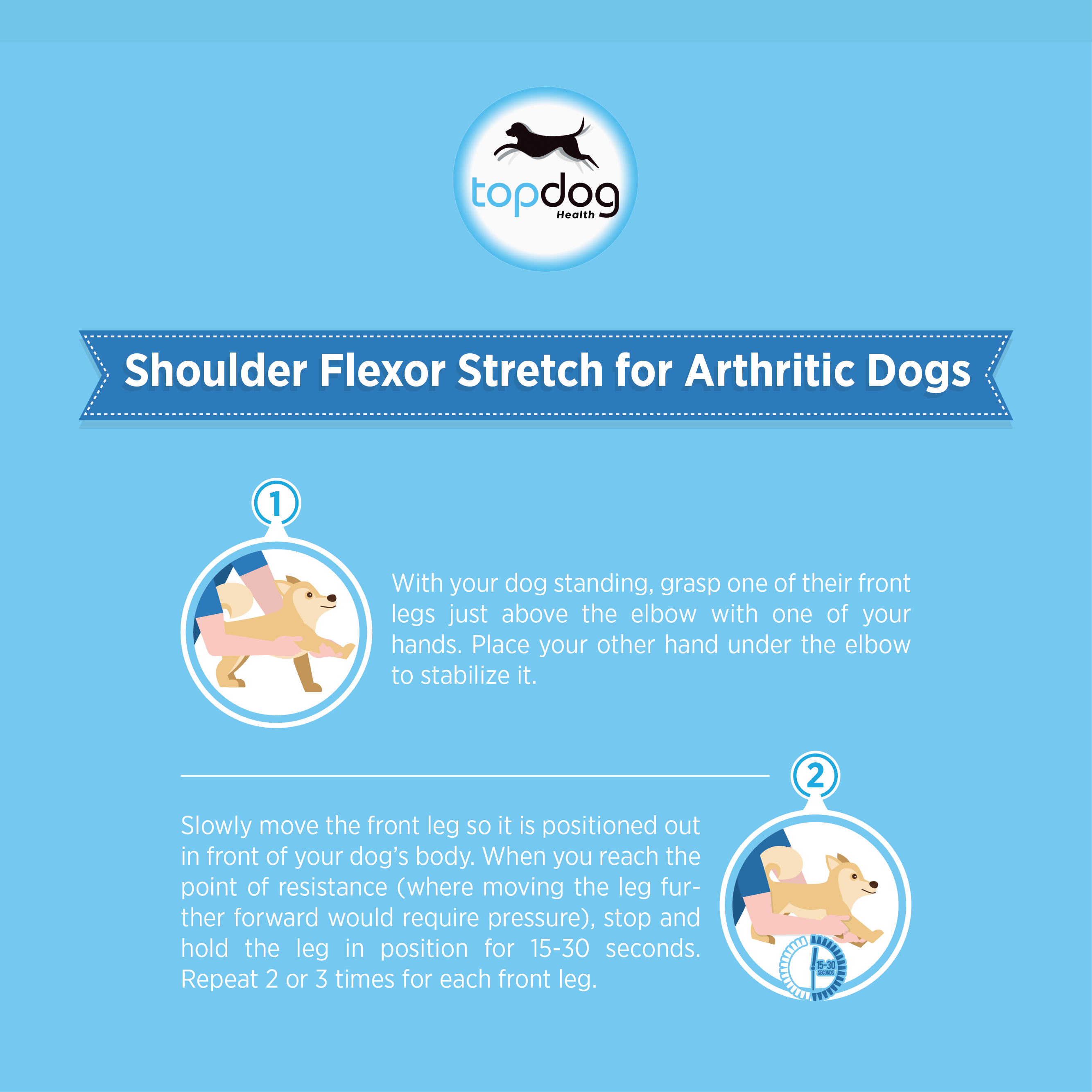Shoulder Flexor Stretch