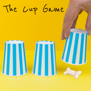 dog cup game