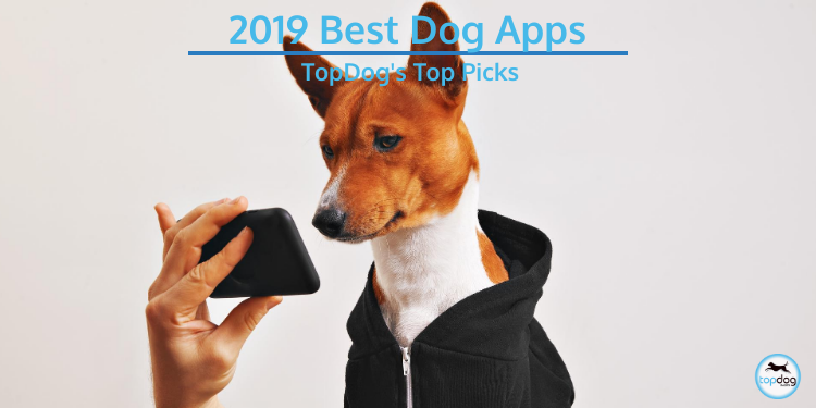 2019 Best Dog Apps