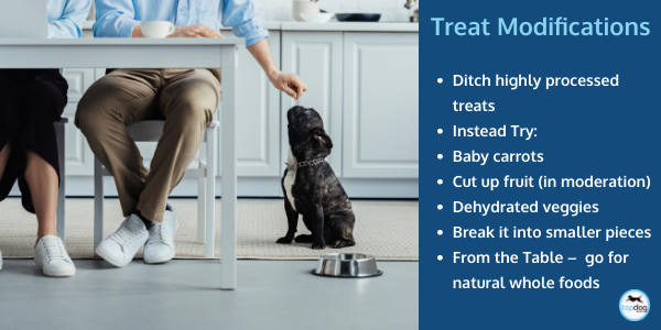 treat modification for arthritic dogs